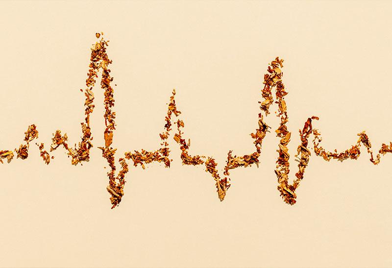 Fatores de risco para o coração